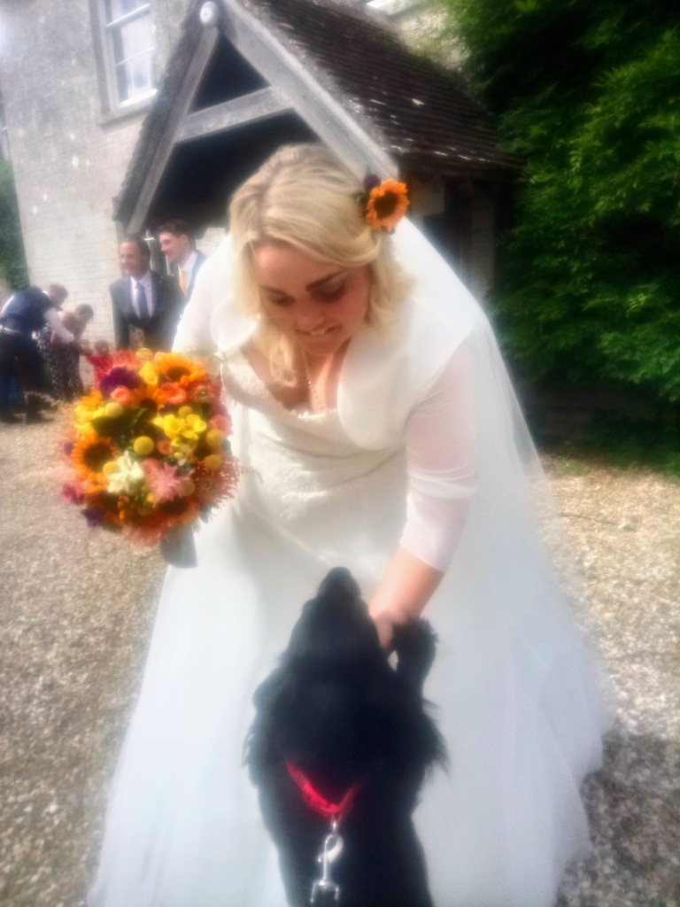 Wedding Day Woofs in Dorset Dogs at Weddings